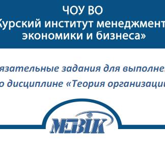 МЭБИК Теория организации