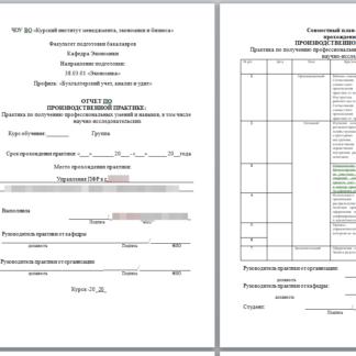 Производственная практика МЭБИК в Управлении Пенсионного фонда