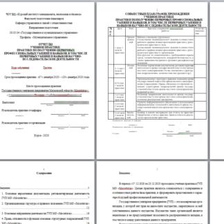 Отчет по учебной практике ГМУ для МЭБИК Государственное унитарное предприятие