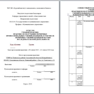 Учебная практика МЭБИК ГМУ в Управлении Пенсионного фонда