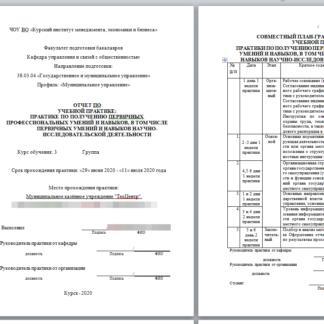 Отчет по учебной практике МЭБИК Муниципальное казённое учреждение