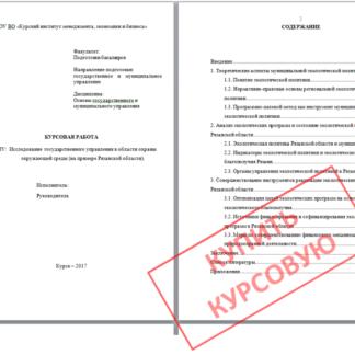 МЭБИК Курсовая работа Основы государственного и муниципального управления
