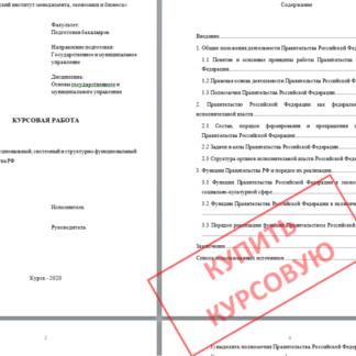 Курсовая МЭБИК Институциональный, системный и структурно-функциональный анализ Правительства РФ