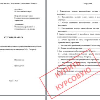 Купсрвая МЭБИК Исследование социальной защиты инвалидов (на примере Чукотского автономного округа)