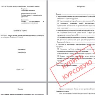 Курсовая работа для МЭБИК на тему Анализ системы противодействия терроризму в субъекте РФ (на примере Сахалинской области)