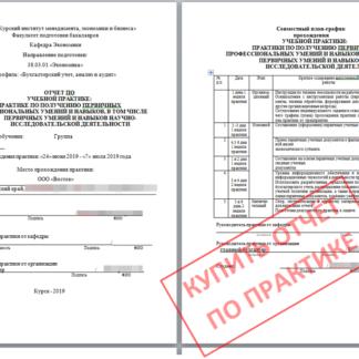 МЭБИК отчёт по учебной практике Бухгалтерский учет, анализ и аудит