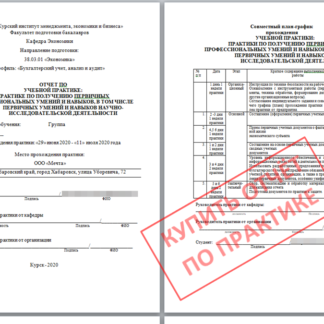 МЭБИК Отчет по учебной практике в ООО