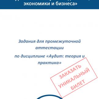 МЭБИК Аудит: теория и практика