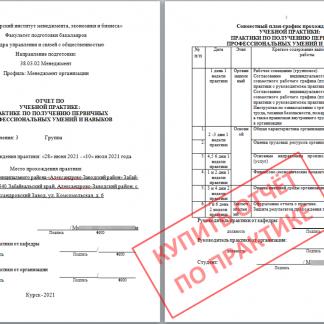 МЭБИК Отчёт по учебной практике Менеджмент организации в Администрации Муниципального района