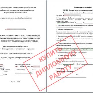 ВКР дипломная для МЭБИК по ГМУ